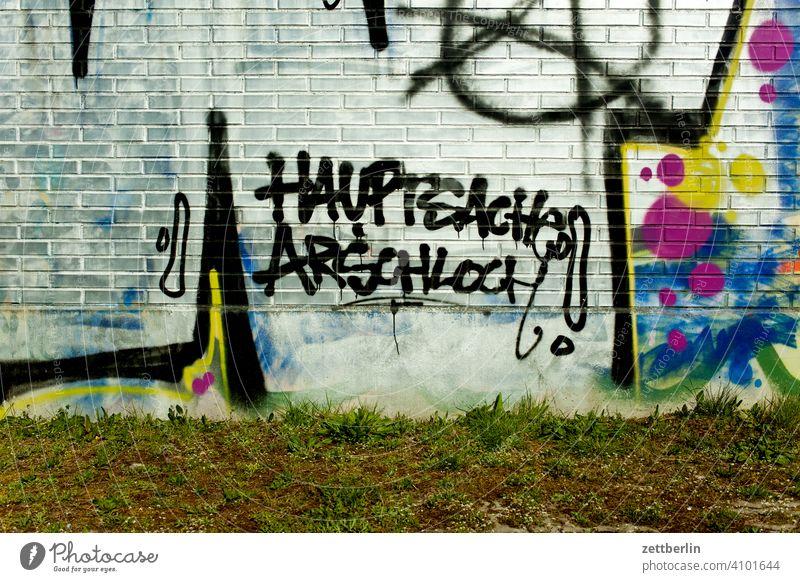 Hauptsache Arschloch arschloch aussage botschaft farbe gesprayt grafitti grafitto illustration kunst mauer message nachricht parole politik sachbeschädigung