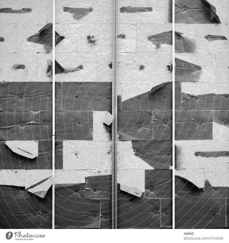 Nach dem Orkan Wand Detailaufnahme Strukturen & Formen Menschenleer Außenaufnahme abgerissen Rest Vergänglichkeit trashig kaputt alt Fetzen Zahn der Zeit