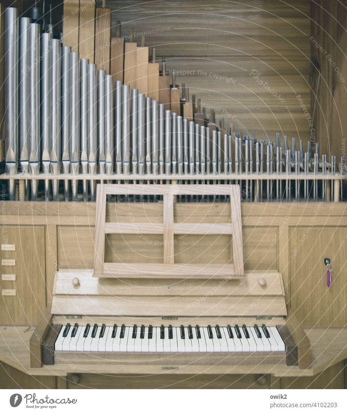 Bis auf Anschlag Orgel Musikinstrument Orgelpfeife Holz Metall Tradition Farbfoto Gedeckte Farben Innenaufnahme Strukturen & Formen Totale Menschenleer