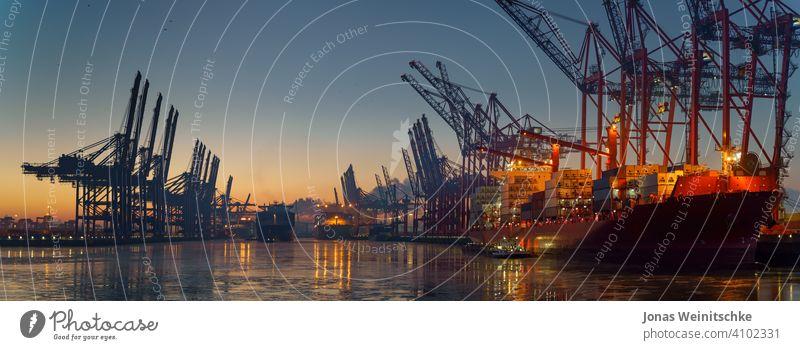 Containerterminal im Hamburger Hafen am Morgen bei eisigen Temperaturen ungeladen Euro-Gate eurogate Elbe Versand Brücke Becken Licht Containerschiff