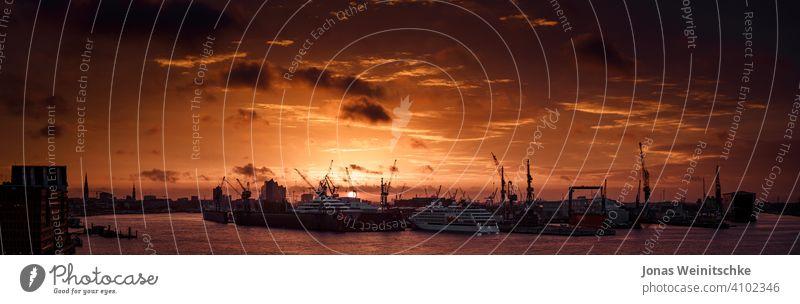 Sonnenaufgang über dem Hamburger Hafen Elbe Sonnenlicht maritim Fluss elphi elbphilharmonie Sehenswürdigkeiten Sightseeing Schönheit Kräne Handelsdock