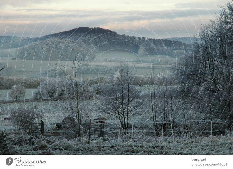 Blick ins Tal Baum ruhig Berge u. Gebirge Landschaft Nebel Frost Hügel