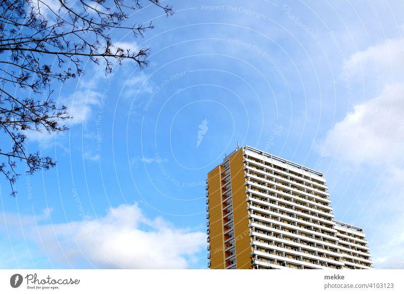 Wohnblock im frühlingshaften Sonnenschein Hochhaus Himmel Wolken Frühling Baum Fassade Architektur Bauwerk Stadt hoch Froschperspektive Gebäude urbantrist