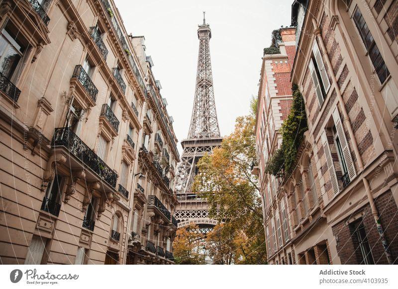 Eiffelturm und alte Gebäude Tour d'Eiffel Großstadt Paris Frankreich Straße Wahrzeichen historisch berühmt urban Stadt antik Antiquität Außenseite Konstruktion