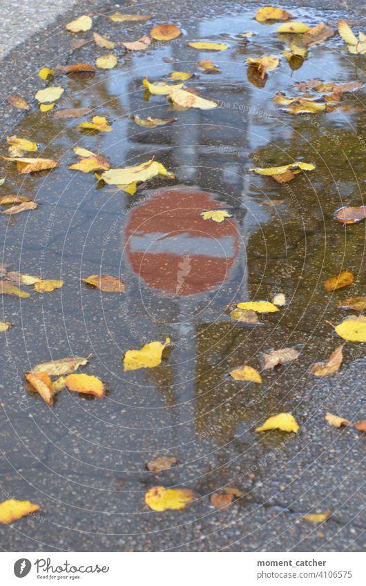 Einfahrt verboten-Schild spiegelt sich in Pfütze mit Herbstlaub Schilder & Markierungen Verkehrszeichen Verkehrsschild Verkerssicherheit Verbotsschild Zeichen
