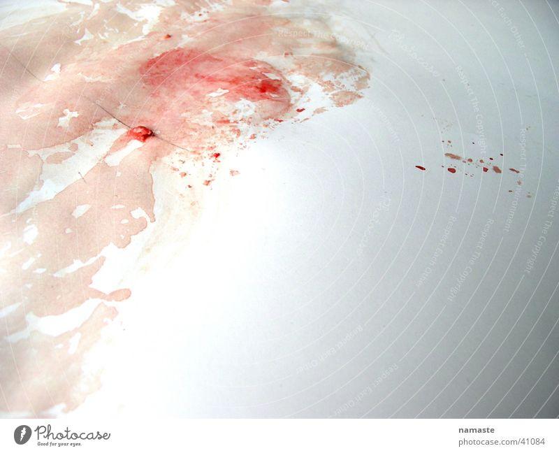 there is blood..... Lifestyle Fleisch rot Ernährung Blut