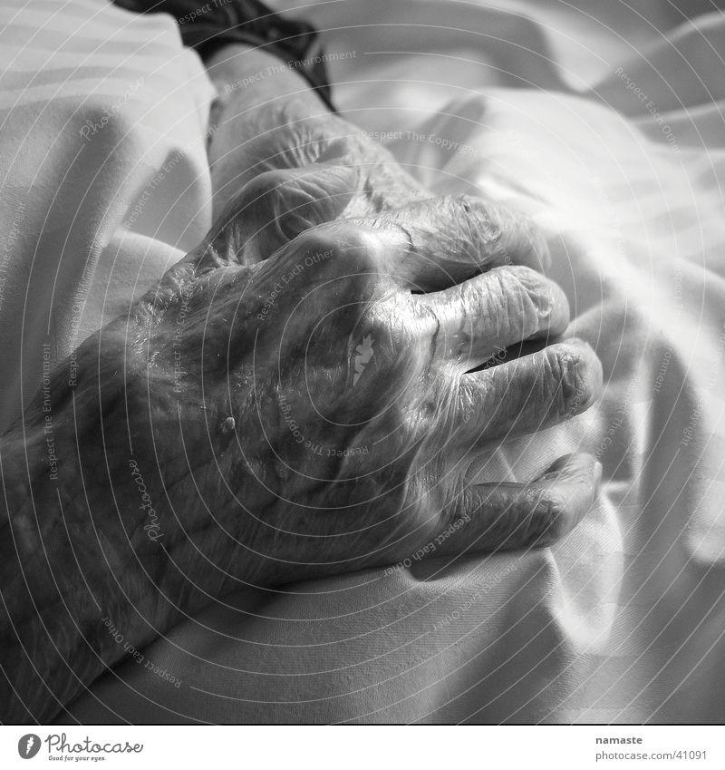 oma luises hände (100 jahre) Frau Mensch Hand alt sensibel verwundbar