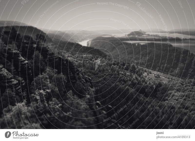 Vernebelter Blick ins Elbtal des Elbsandsteingebirges Gebirge Perspektive Elbe Tal Berg Berge u. Gebirge hoch oben Vogelperspektive fliegen Ausflug gebirgig