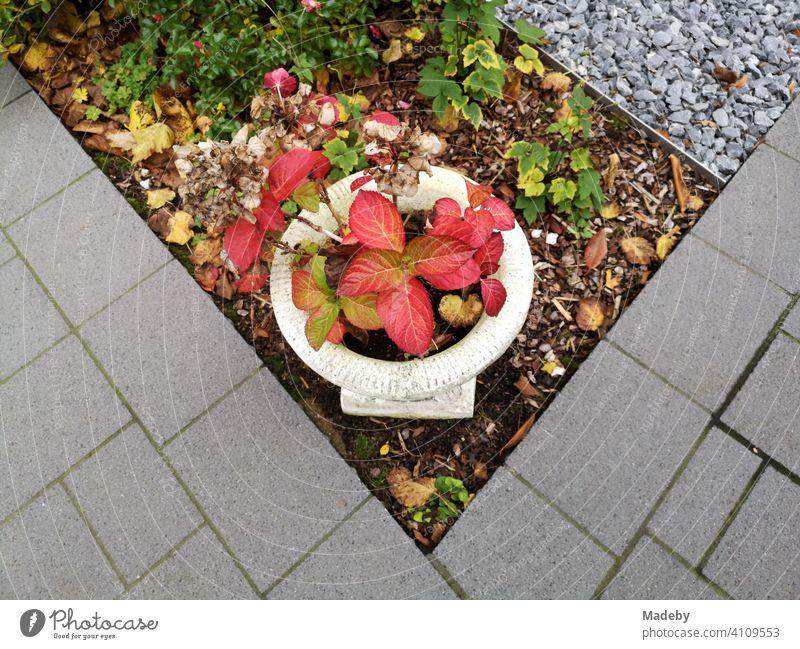 Kitschige Pflanzschale mit roten Blättern in einem Vorgarten mit grauem Pflasterstein und grauem Kiesel in Oerlinghausen bei Bielefeld am Hermannsweg im Teutoburger Wald in Ostwestfalen-Lippe