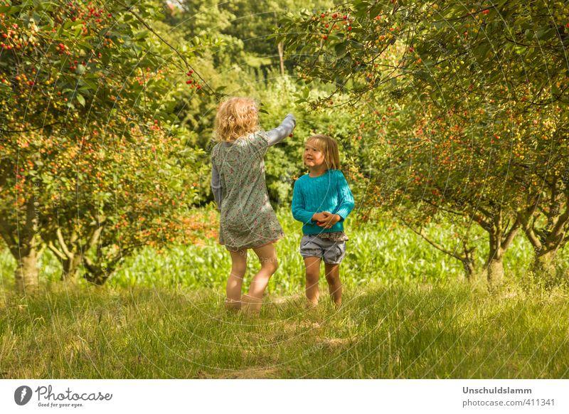 im Kirschwald Mensch Kind Natur grün Sommer Mädchen Landschaft Freude Umwelt Leben Wiese Spielen Glück Garten Freundschaft Zusammensein