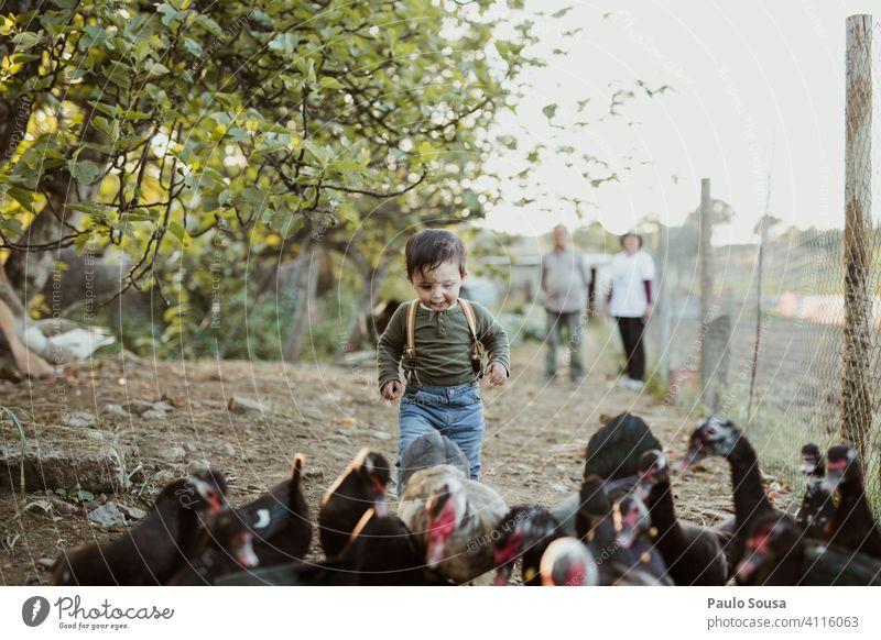 Kind spielt mit Enten Kaukasier 1-3 Jahre Bauernhof Nutztier Entenvögel Natur authentisch Neugier Tierliebe niedlich Farbfoto Kindheit Spaß haben Glück