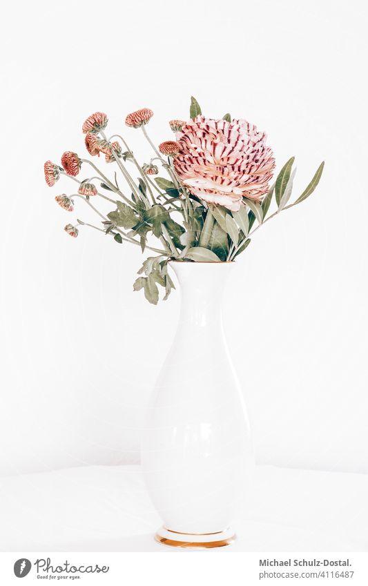 filigranes rosa blumenbouqet in weiser Vase mit goldenem Rand Blume Pflanze Zierpflanze schön ruhig flower plant calm quiet grün green still stillleben deko