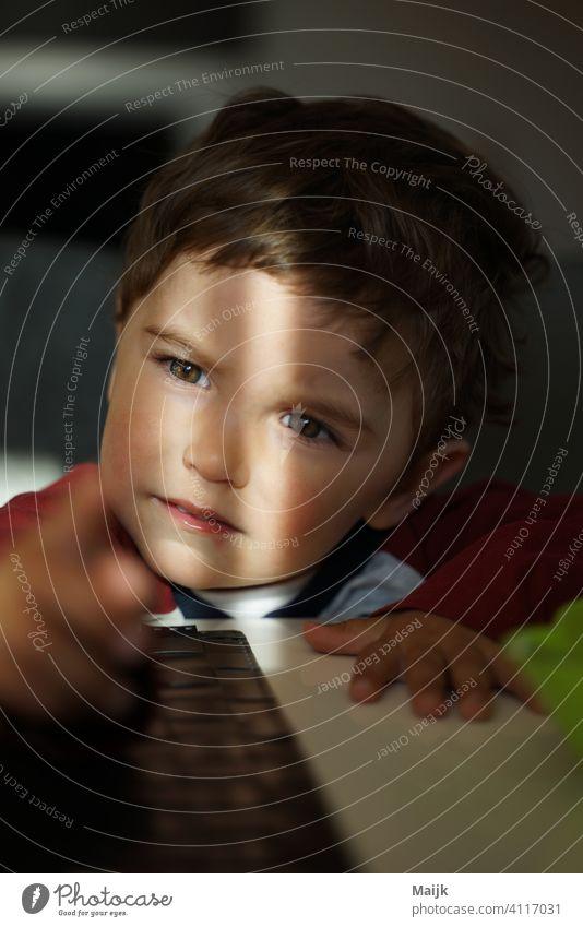 kleiner Junge junge bub Kleinkind Kindheit Frisur Heranwachsender Augenfarbe Fröhlichkeit Hand Freude Licht Farbfoto Mensch 1-3 Jahre Leben