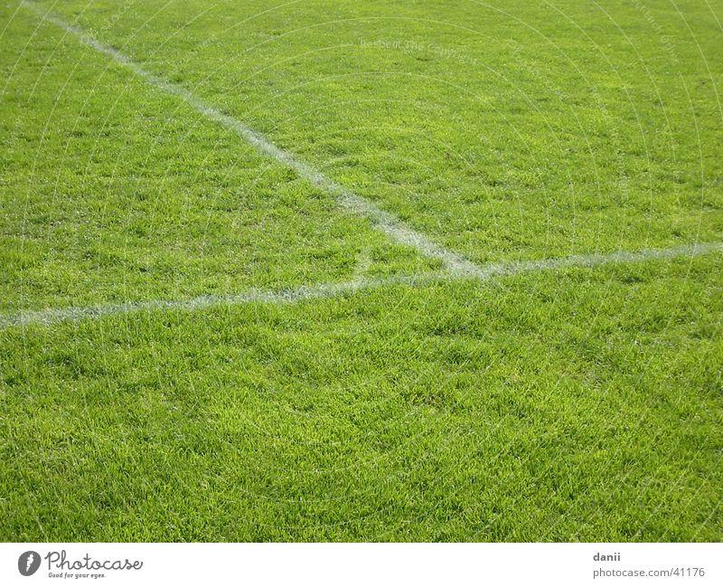 Fußballrasen Fußballplatz Spielfeld grün Rasen Sport Trainingsplatz