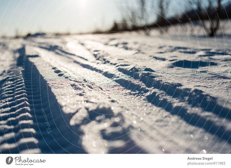 Spuren Skifahren Natur Landschaft Erde Sonne Winter Klima Schönes Wetter Eis Frost Schnee Linie Streifen Skispur Loipe glänzend kalt blau weiß selbstbewußt