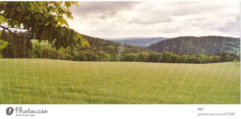 Bergpanorama mit Wiese und Baum Blatt Feld grün schön Wolken Thüringer Wald Ferne Panorama (Aussicht) Thüringen Berge u. Gebirge Idylle Natur Himmel Landschaft