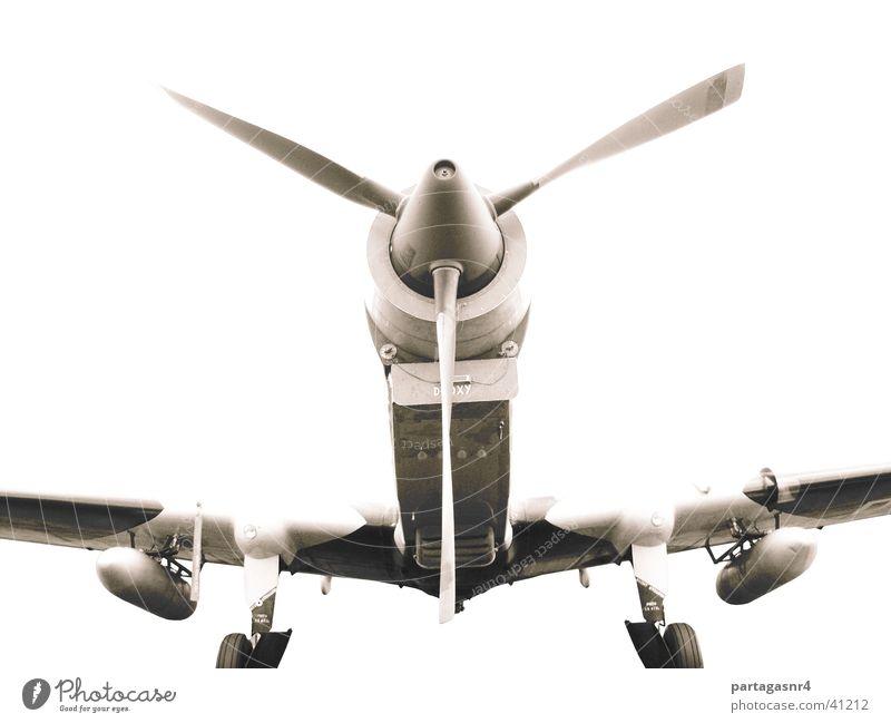 Gebirgs-Jäger Turboprop Flugzeug historisch Militär
