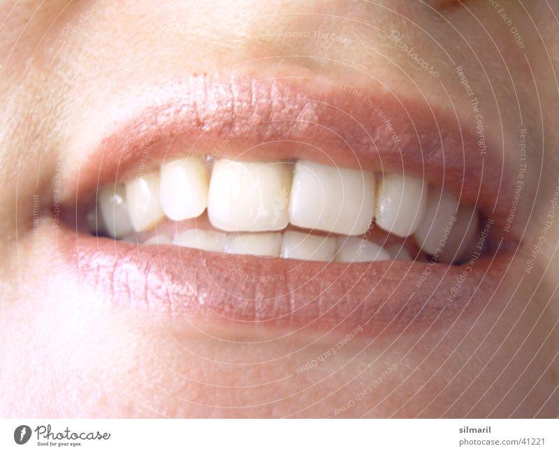 Kesser Mund Frau weiß rot Freude Ernährung lachen Mund Zähne Lippen Küssen Lust Zahnarzt beißen verführerisch