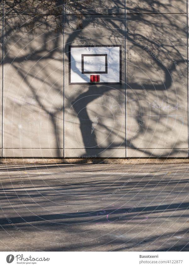 Schatten eines Baumes fällt auf eine Gebäudewand mit Basketballkorb. Schulhof in Vitoria, Baskenland, Spanien Frühling Wand Nachmittag Sonne sonnig bedrohlich