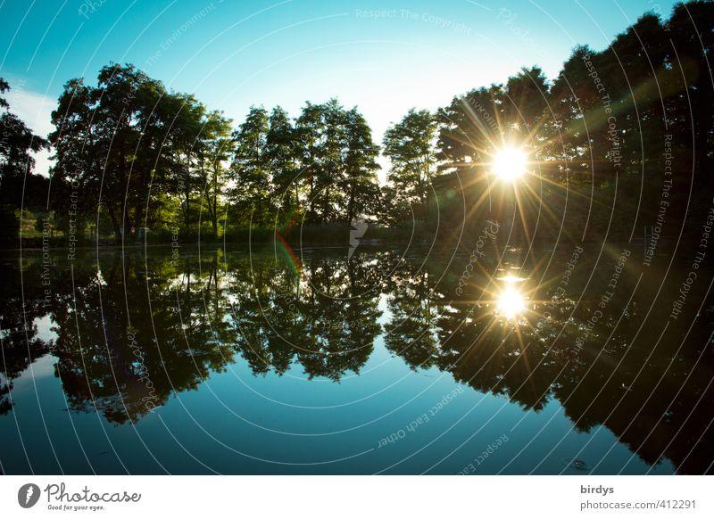 Abends am See Natur Wolkenloser Himmel Sonne Sonnenaufgang Sonnenuntergang Sonnenlicht Sommer Schönes Wetter Baum Laubbaum Seeufer leuchten ästhetisch