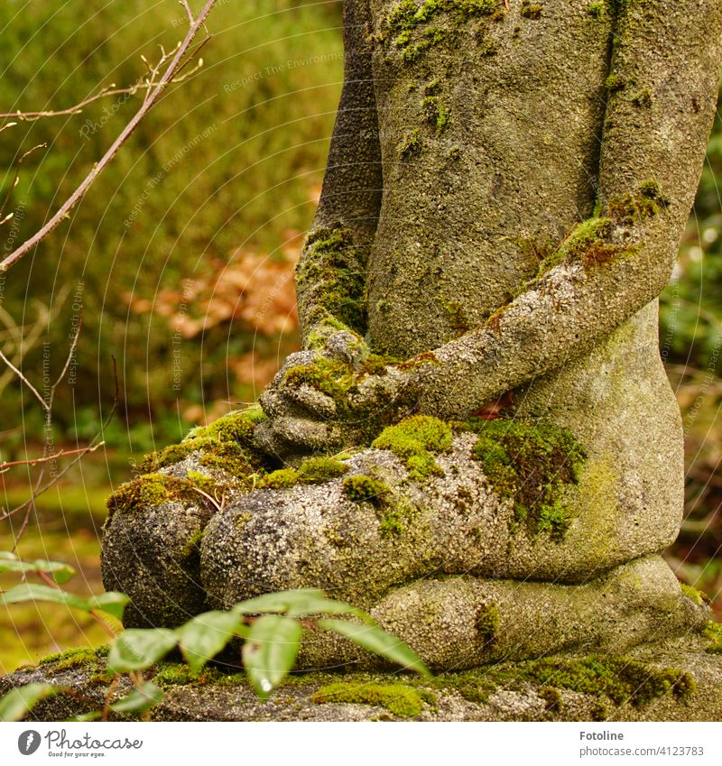 Still und andächtig kniet die Statue auf dem Friedhof und wacht über die Seelen der Verstorbenen Stein beten Religion & Glaube Gebet Spiritualität Hoffnung