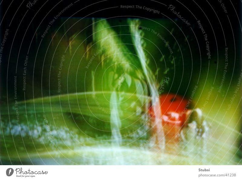 Käfer Langzeitbelichtung Insekt Fernsehbild
