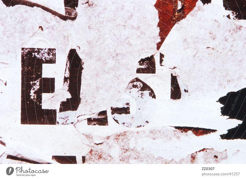 EAST Plakat Plakatwand Holz Typographie kaputt dreckig obskur Vernacular Type