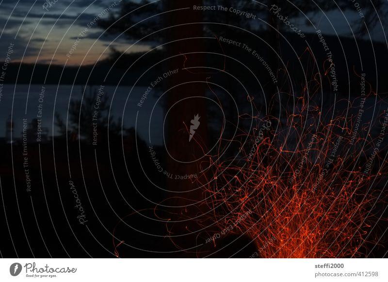 Funken fliegen Natur Ferien & Urlaub & Reisen Pflanze Sommer Erholung Landschaft Wald Ferne Umwelt dunkel kalt Wärme Freiheit See natürlich Horizont