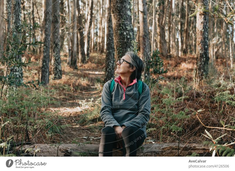 Alte Frau sitzt über einem Baumstamm im Wald während eines herbstlichen Tages mit Kopierraum, Wellness-Trekking ein Jogging-Konzepte Person älter Ruhestand