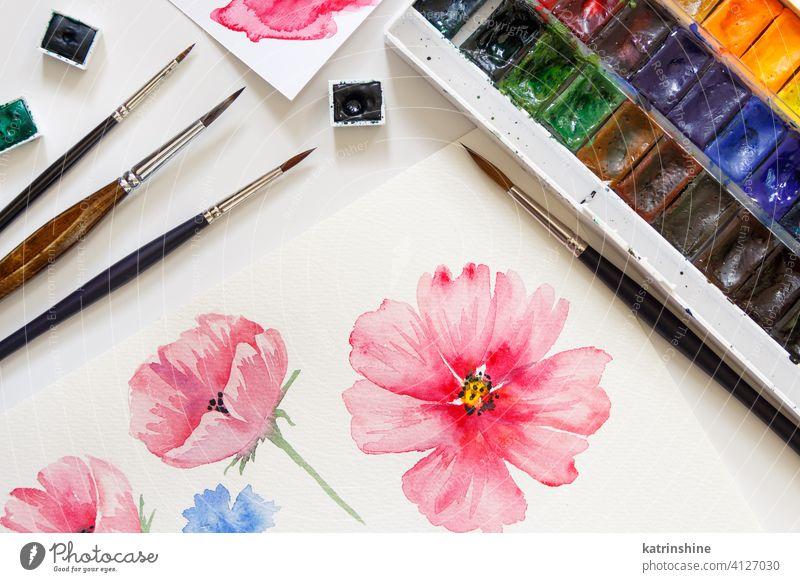 Frau malen rosa Blumen mit Aquarellfarben t Farbe peonie Rosen Draufsicht Bürste niemand hell Pastell künstlerisch Papier Bildung Kreativität Zeichnung Tisch