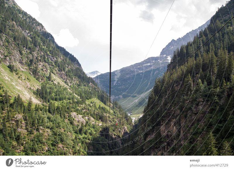 ich sehe etwas, was du nicht siehst Umwelt Natur Landschaft Wald Berge u. Gebirge Schlucht natürlich grün Seilbahn Tourismus Schweiz Farbfoto Außenaufnahme