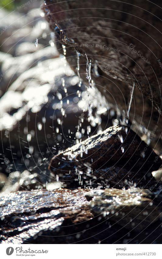 drip drop Natur Wasser dunkel Umwelt Stein Felsen nass Wassertropfen Höhle