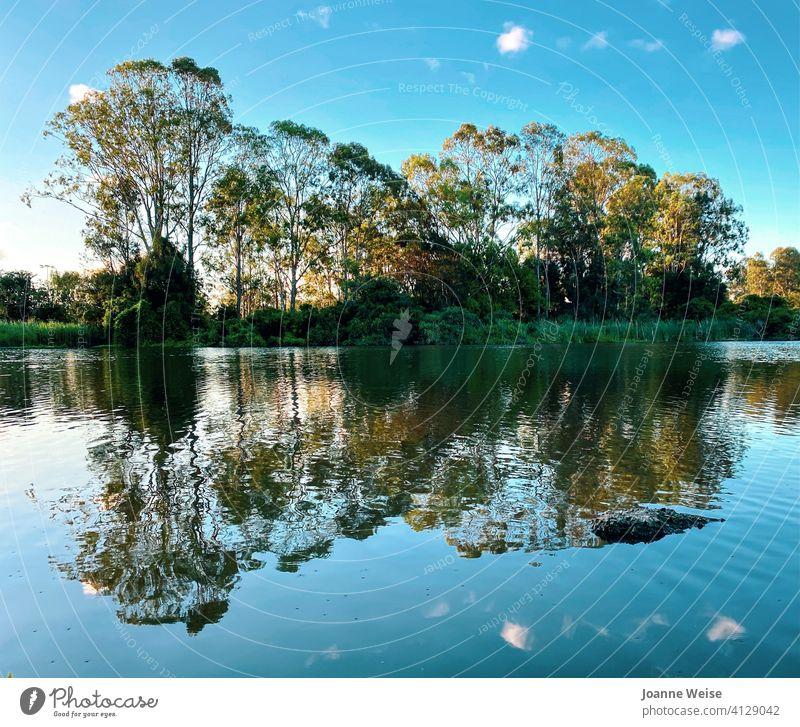 Bäume, Wolken und Himmel spiegeln sich in einem See am späten Nachmittag. Reflexion & Spiegelung Spiegelung im Wasser Reflexion der Wolken im See Natur