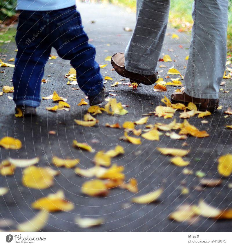 Herbstspaziergang Mensch Jugendliche Blatt Erwachsene 18-30 Jahre Leben Gefühle Beine gehen Fuß Stimmung Familie & Verwandtschaft Zusammensein Kindheit Baby