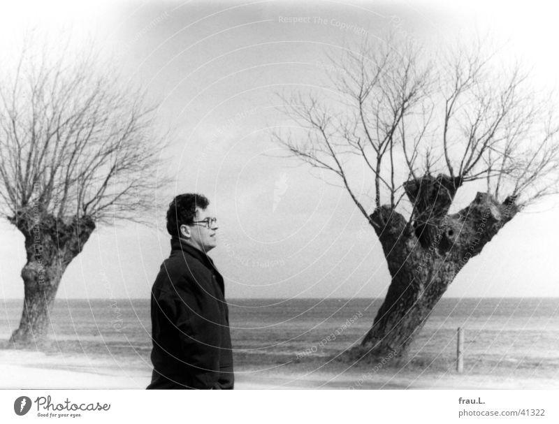 drei Kopfweiden Mann Baum Meer Winter Strand Ferien & Urlaub & Reisen Einsamkeit kalt Haare & Frisuren Küste lustig Wind Brille Freizeit & Hobby Sturm Jacke