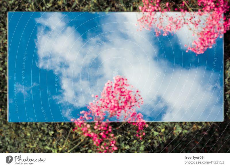 Erstaunlich flach legen mit dem Himmel auf einem Spiegel, rosa Blumen und Gras Szene Hintergrund abstrakt Attrappe Textfreiraum Rechteck Wolken Natur Licht