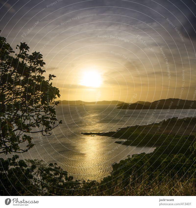 Sunset Black Ferne Landschaft Wolken Baum exotisch Küste Meer Pazifik Insel Queensland leuchten Wärme gold Stimmung Geborgenheit Romantik Vorsicht Farbe