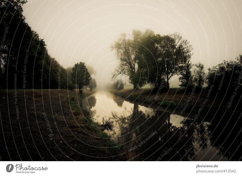 Nidda im Nebel Wasser Baum Landschaft träumen Fluss geheimnisvoll