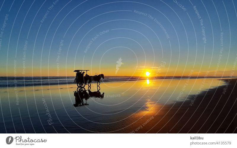 eine Pferdekutsche, die bei Sonnenuntergang über einen nassen und spiegelnden Sandstrand fährt Indonesien Java Hintergrund Strand Strandhintergrund Strandsand