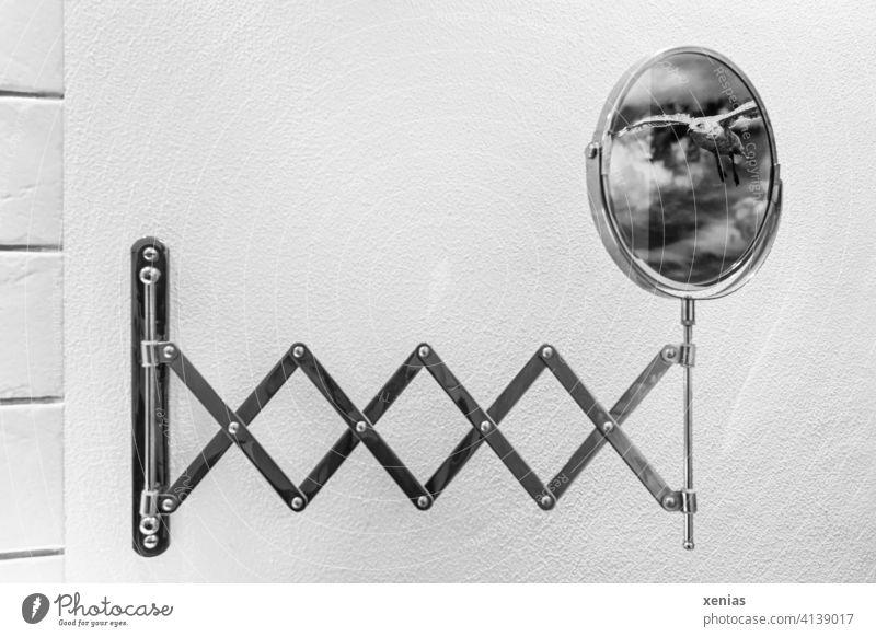 Illusion / Möwe fliegt über den ausgezogenen Schminkspiegel in das Badezimmer Spiegel Kosmetikspiegel ausziehbar rund fliegen Reflexion & Spiegelung
