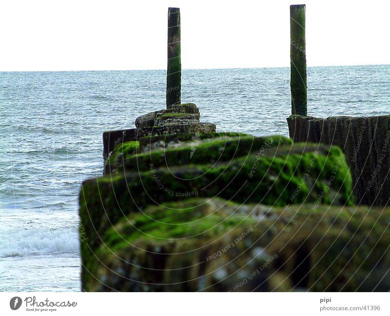 mit dem tag am meer_I Wasser Meer grün blau Nordsee schlechtes Wetter