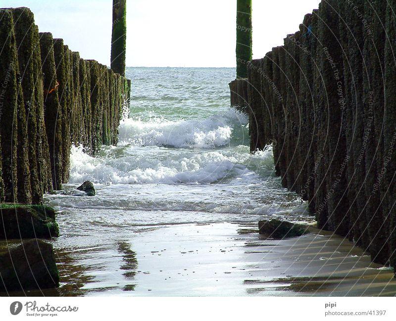 mit dem tag am meer Wasser Strand See Sand Nordsee Meer Poller