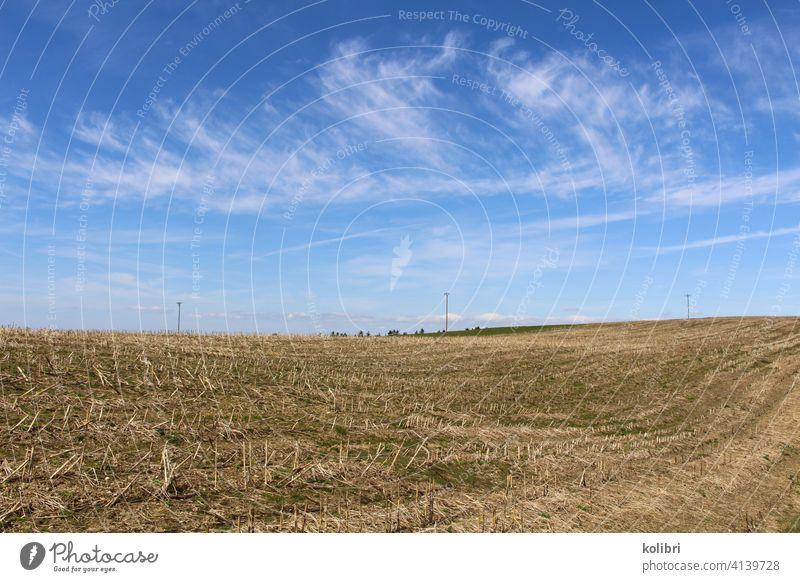 Stoppelfeld oder abgeerntetes Feld unter blauem Himmel mit Schleierwolken Landschaft Landwirtschaft Menschenleer Farbfoto Stroh Außenaufnahme Schönes Wetter