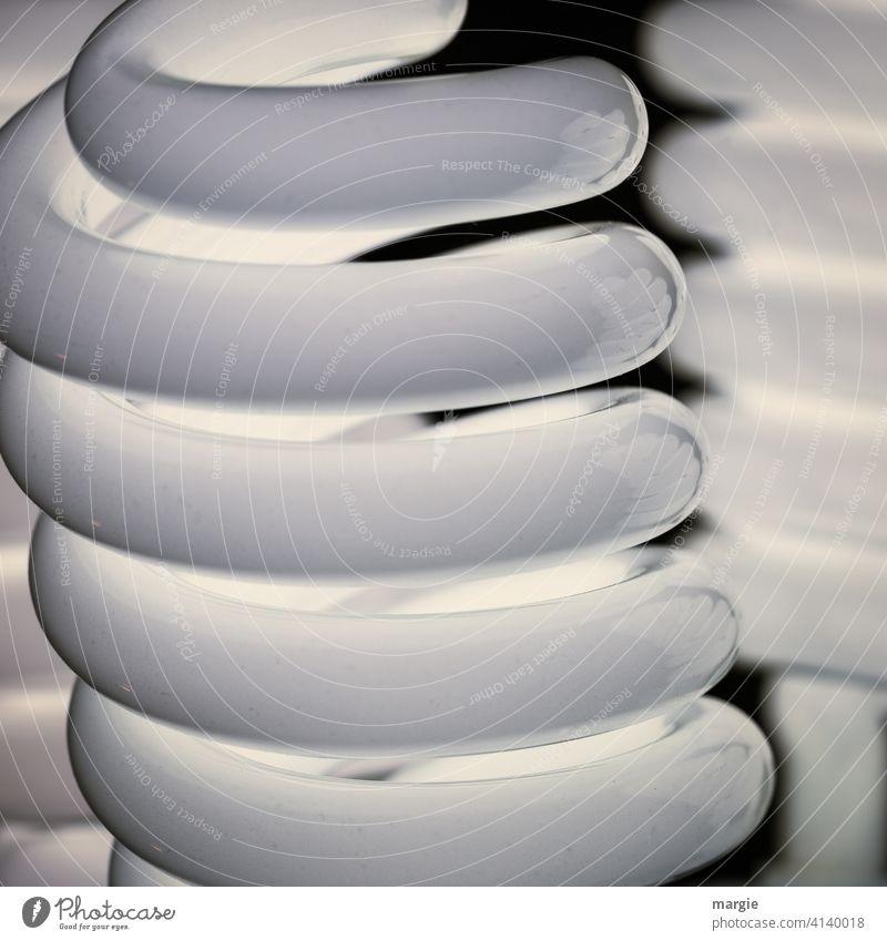 Tageslicht Fotolampen Lampe Licht Röhren Beleuchtung hell Technik & Technologie Elektrisches Gerät Glühbirne Glas Energiekrise Arbeitsplatz gluechlampe
