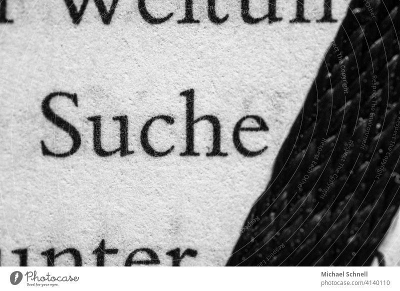 """Leseband von einem Buch und Begriff """"Suche"""" Lesezeichenband Einmerkband lesen Bildung Wissen Buchseite Papier Lesestoff Printmedien Information finden"""