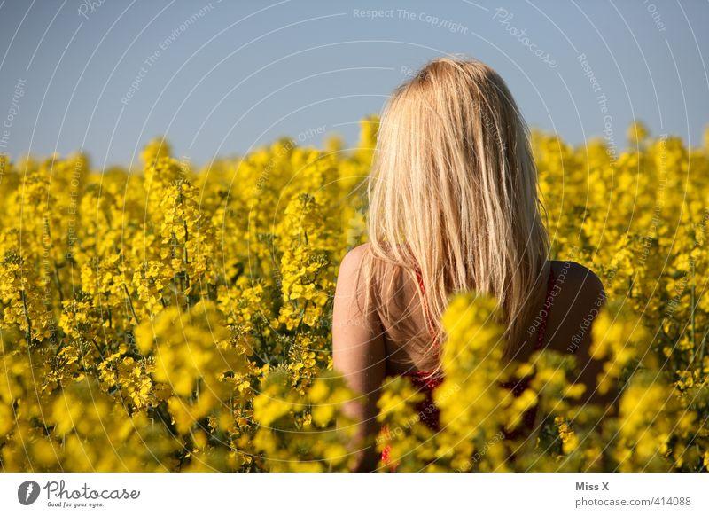 Dauerbrenner Mensch Frau Kind Jugendliche schön Sommer Sonne Junge Frau Erwachsene gelb 18-30 Jahre Weiblicher Akt Erotik feminin Haare & Frisuren Feld
