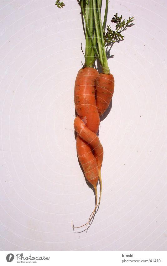 Verbundenheit Liebe Gesundheit Gemüse nah Partner Partnerschaft Möhre Wurzel Vegetarische Ernährung