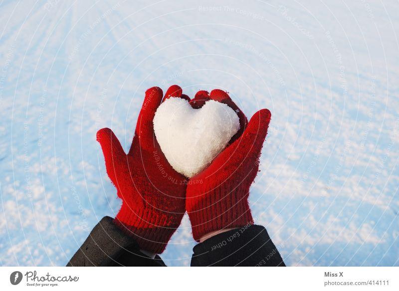 Herz aus Eis weiß rot Winter kalt Liebe Schnee Gefühle Stimmung Frost Geschenk Romantik Verliebtheit Schneelandschaft Liebeskummer