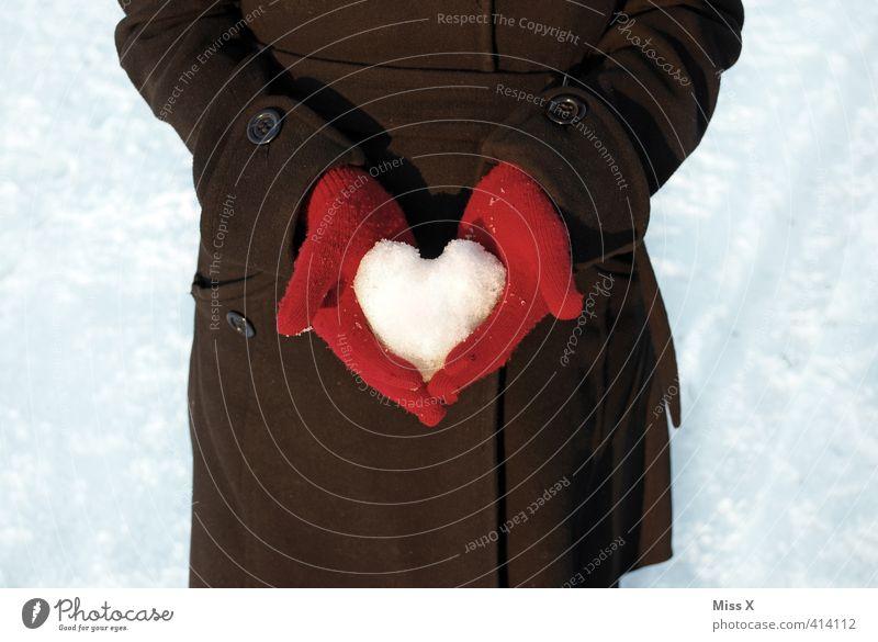 Winterliebe Mensch Jugendliche Hand rot Winter Erwachsene kalt Liebe 18-30 Jahre Leben Schnee Gefühle Paar Stimmung Herz Hoffnung