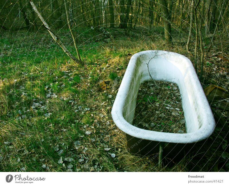 Baden im Wald grün Blatt dreckig obskur Badewanne verwittert